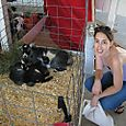 Laura and Goats